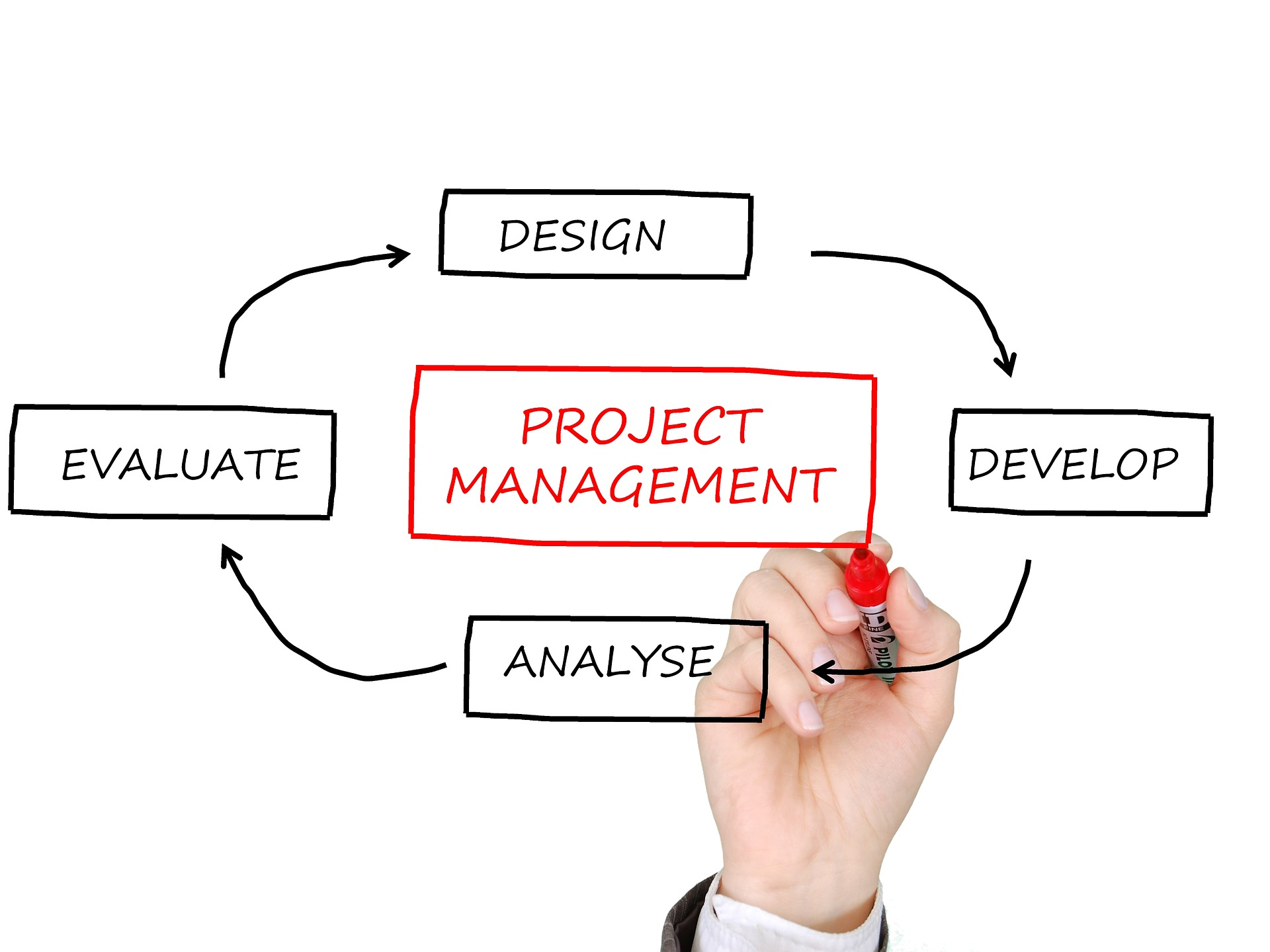 What You Need as a Project Manager
